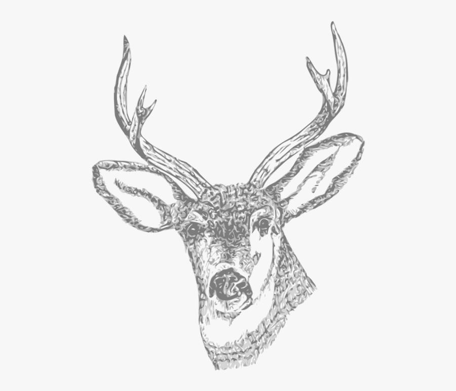 Stag Skull Tattoo Design, Transparent Clipart