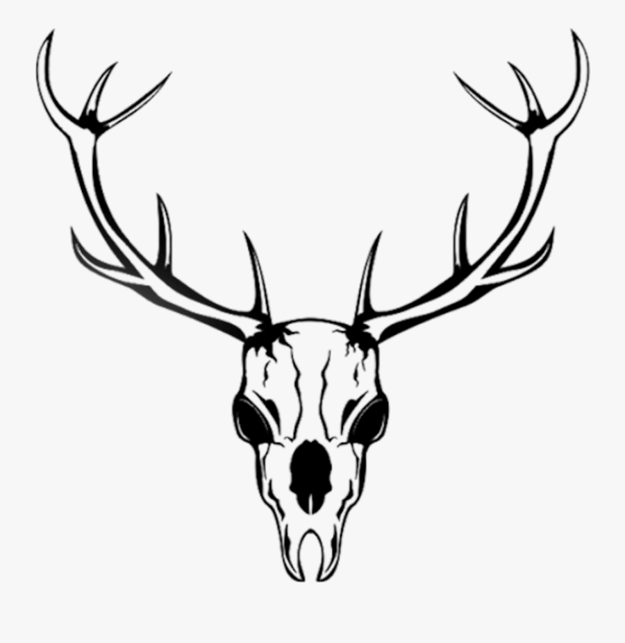 Horn Clipart , Png Download - Cartoon Deer Skull, Transparent Clipart