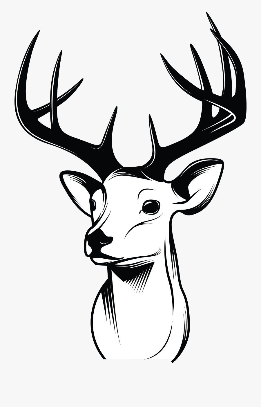 Deer Face Drawing Cartoon , Transparent Cartoons - Simple Easy Deer Drawings, Transparent Clipart