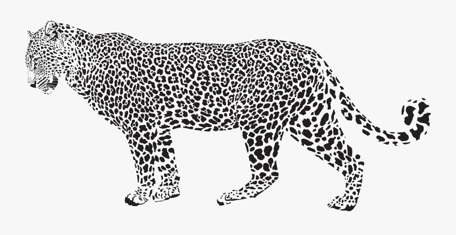 Snow Leopard Cheetah Clip Art - Leopard Black And White, Transparent Clipart