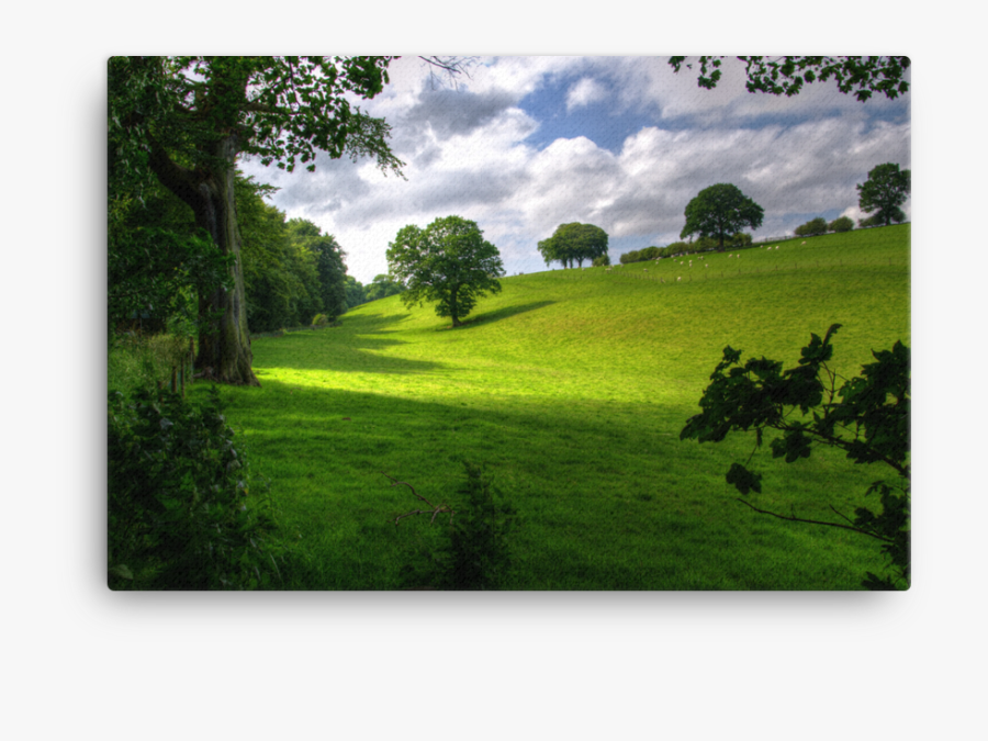 Clip Art Hill With Trees Under - Public Domain Free Landscape, Transparent Clipart