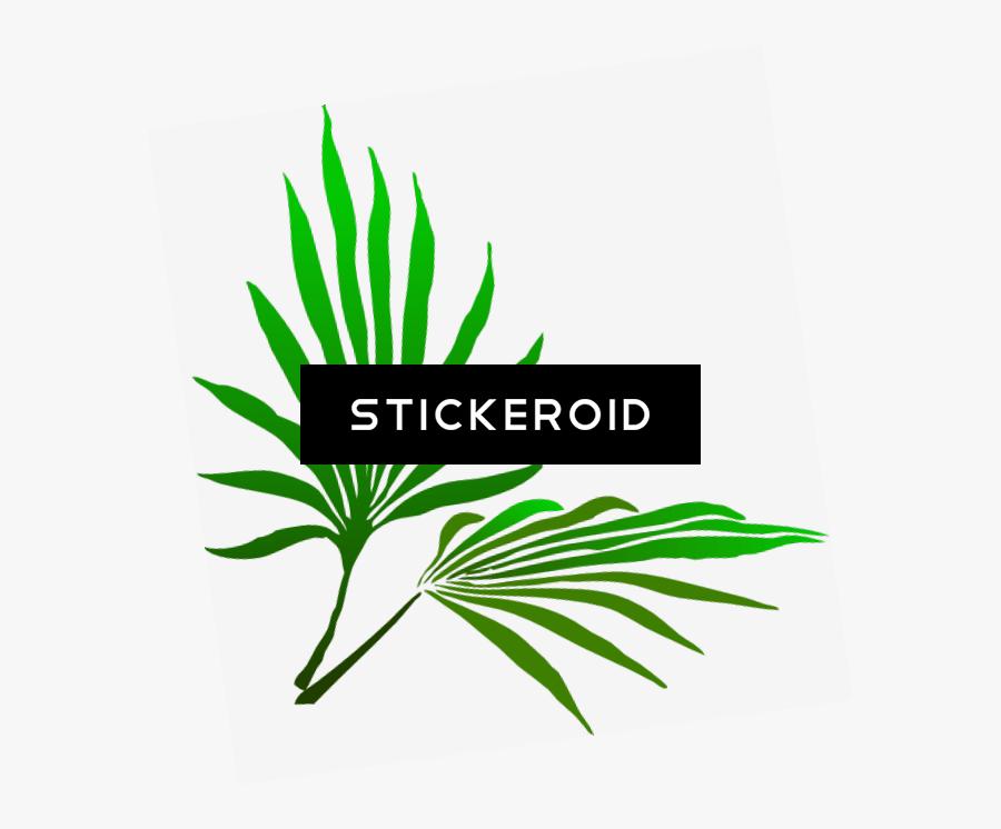 Sukkot Palm Branch - Palm Frond Clip Art, Transparent Clipart