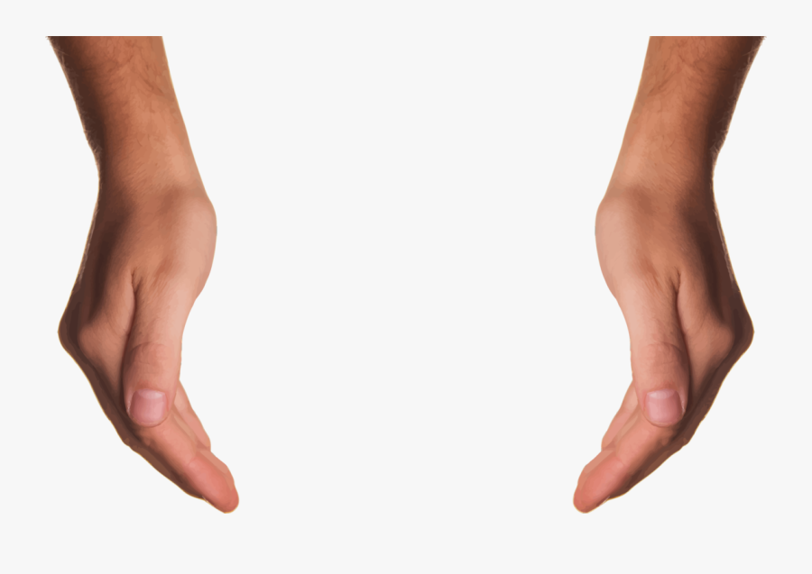 Thumb,leg,hand - Cupping Hands Png, Transparent Clipart