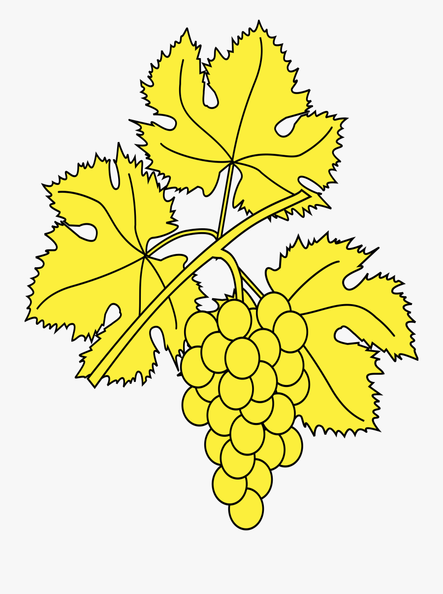 Grape Transparent De Raisin - Grapes Leaf Coloring, Transparent Clipart