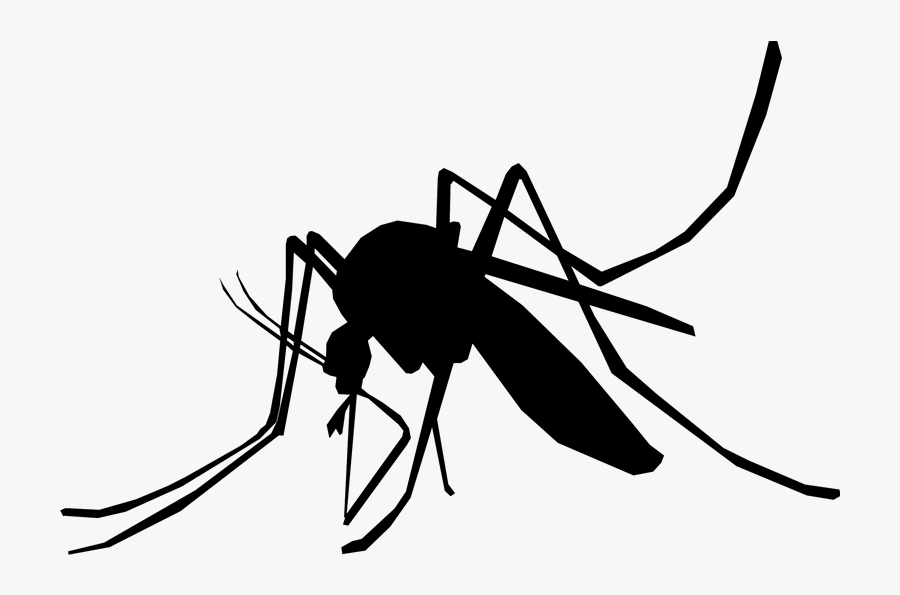 Household Insect Repellents Mosquito Control Pest Control - Mosquito Del Dengue Png, Transparent Clipart