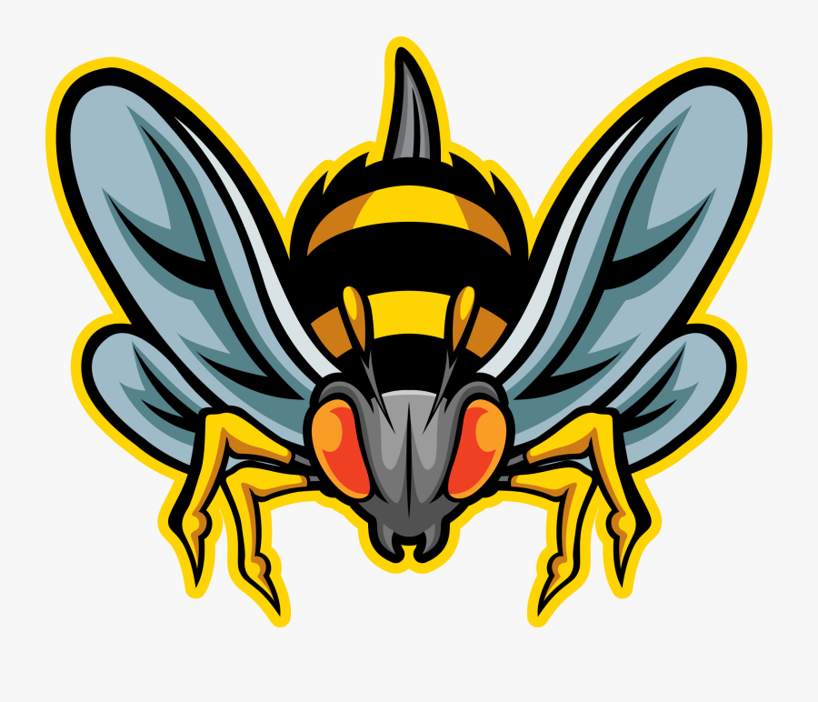 Cockroach Control In Rochester, Ny - Illustration, Transparent Clipart