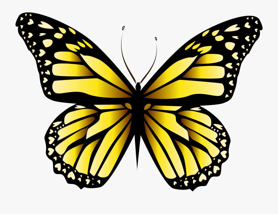 Butterfly Wings Clipart, Transparent Clipart