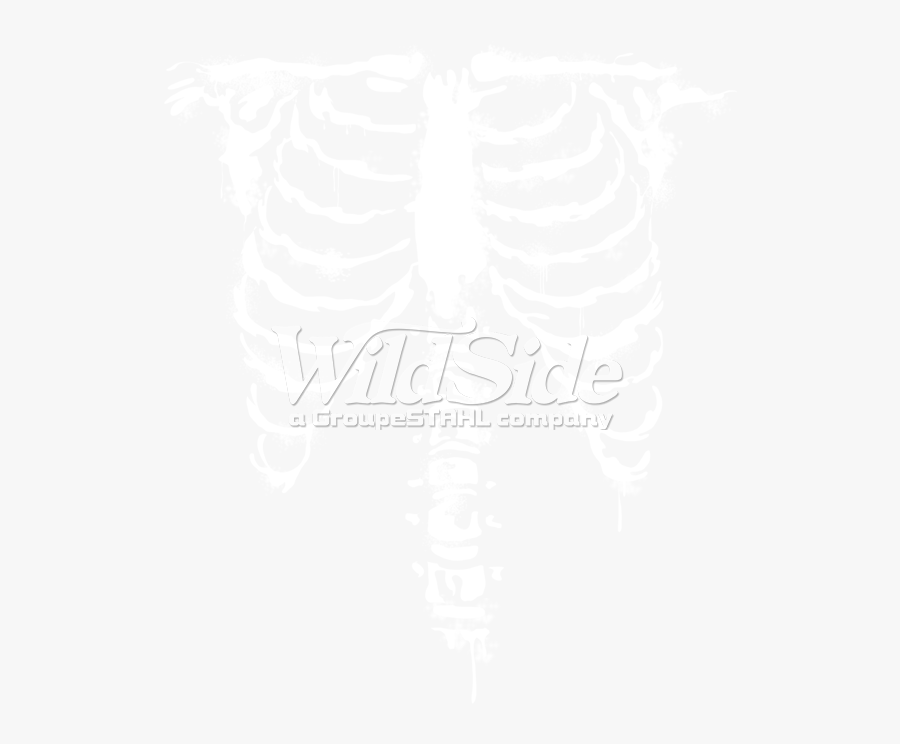 Ribcage Front White Ink - Rib Cage X Ray Png, Transparent Clipart