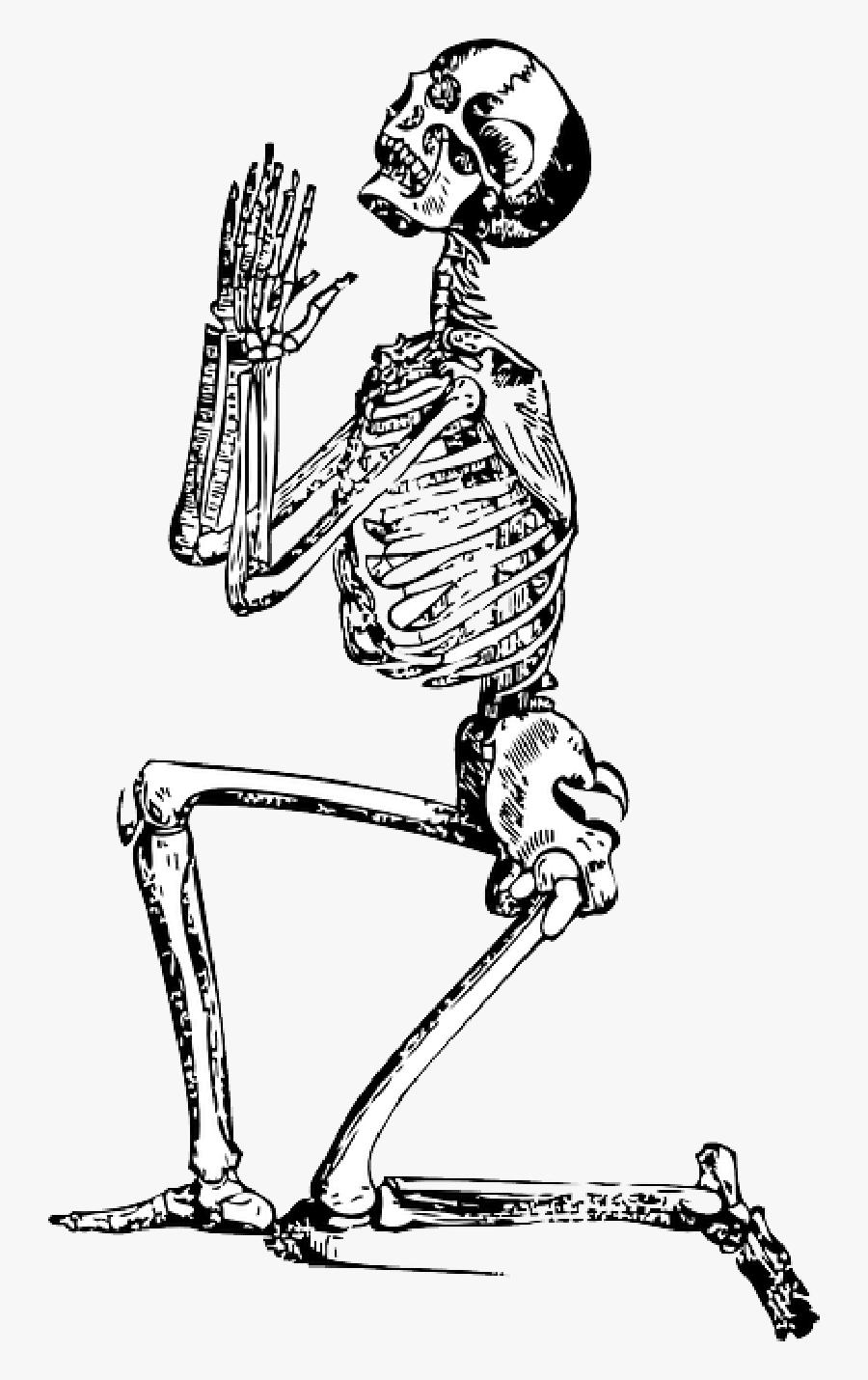 Prayer Hands Png - Praying Skeleton Vector, Transparent Clipart