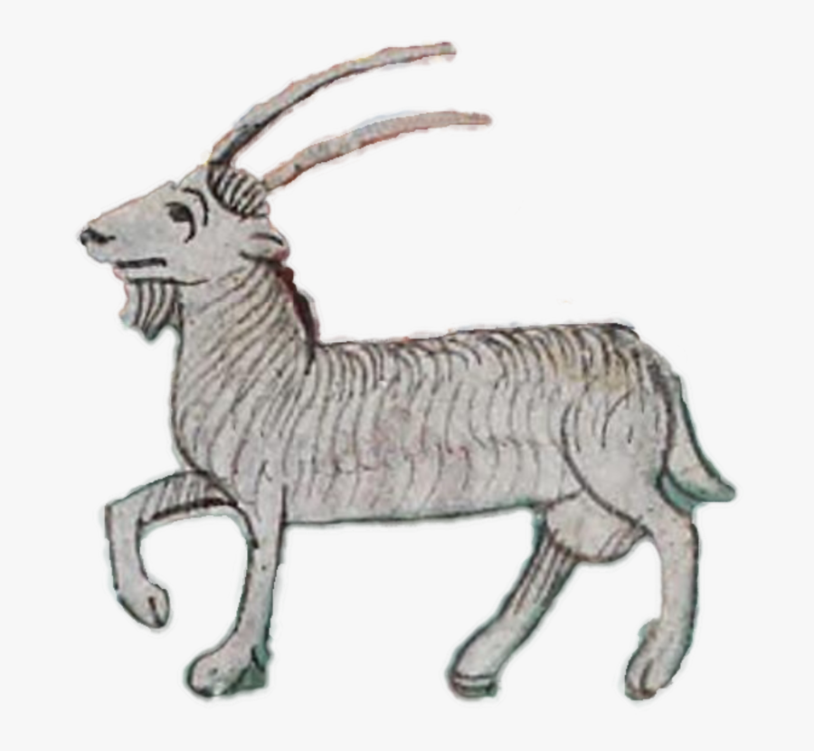 Sheep,antelope,cattle Like Mammal - Goat In Middle Ages, Transparent Clipart