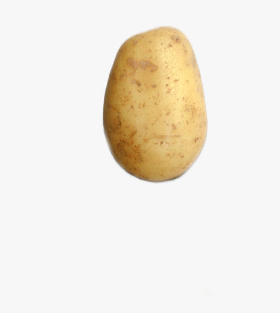Potato Freetoedit - Saba Banana, Transparent Clipart