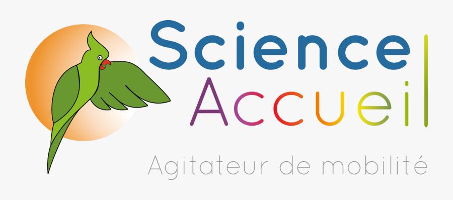 Science Accueil Est Une Association Loi - Illustration, Transparent Clipart