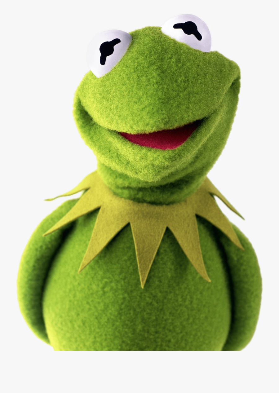 Kermit The Frog Shy - Kermit The Frog With Glasses, Transparent Clipart