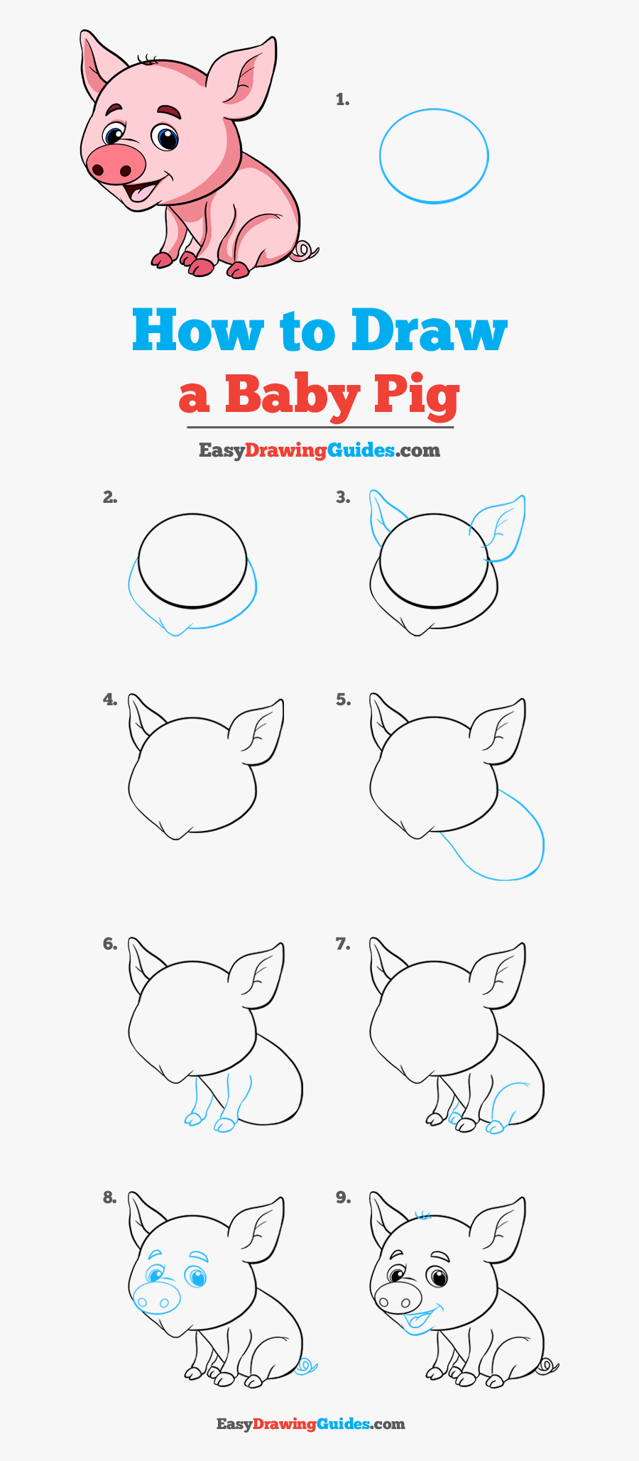 How To Draw Baby Pig - Step By Step Pig Drawing Easy, Transparent Clipart