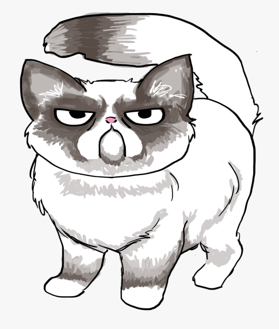 Drawn Grumpy Cat Easy Draw Pencil And In Color Drawn - Easy Drawing Of Grumpy Cat, Transparent Clipart