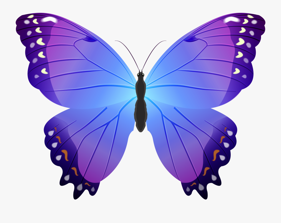 Moths And Character - Purple Butterflies With A Blue Background, Transparent Clipart