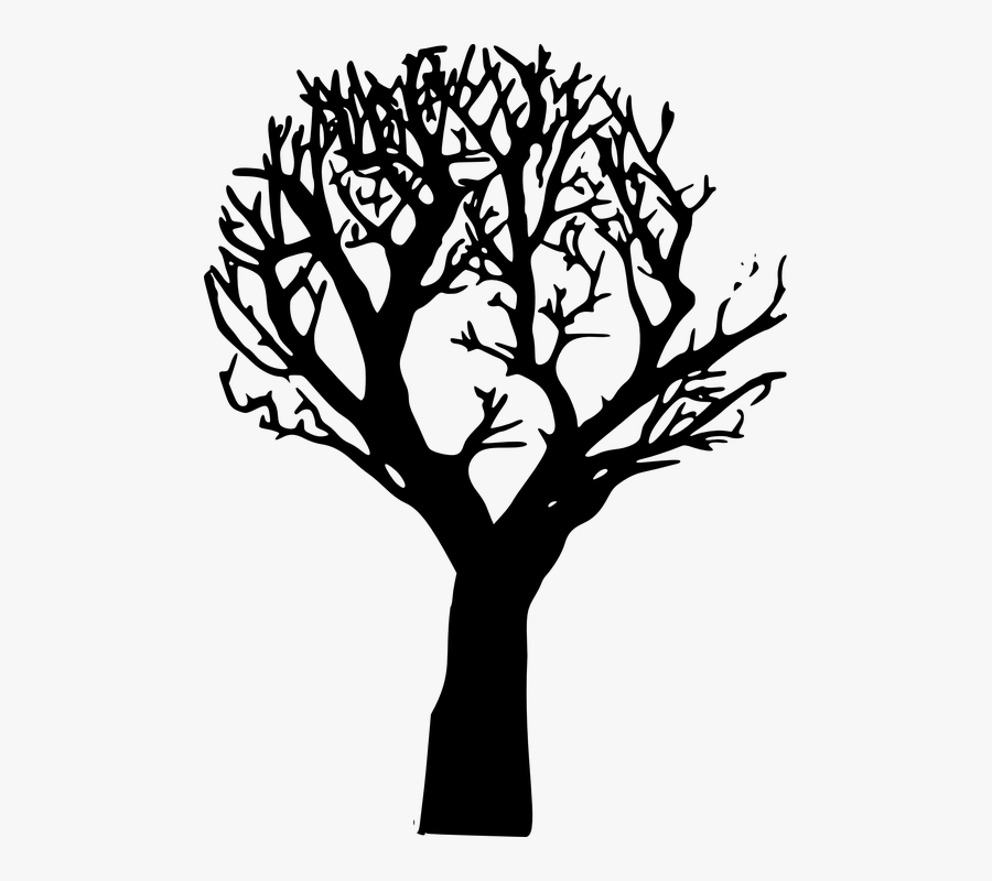 Transparent Tree Branch Vector Png Tree Cartoon Black Png Free Transparent Clipart Clipartkey All of these black and white tree resources are for free download on pngtree. transparent tree branch vector png