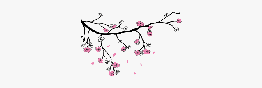 #sakura #sakuras #flower #flowers #cherry #cherryblossoms - Cartoon Cherry Blossom Flowers Drawing, Transparent Clipart