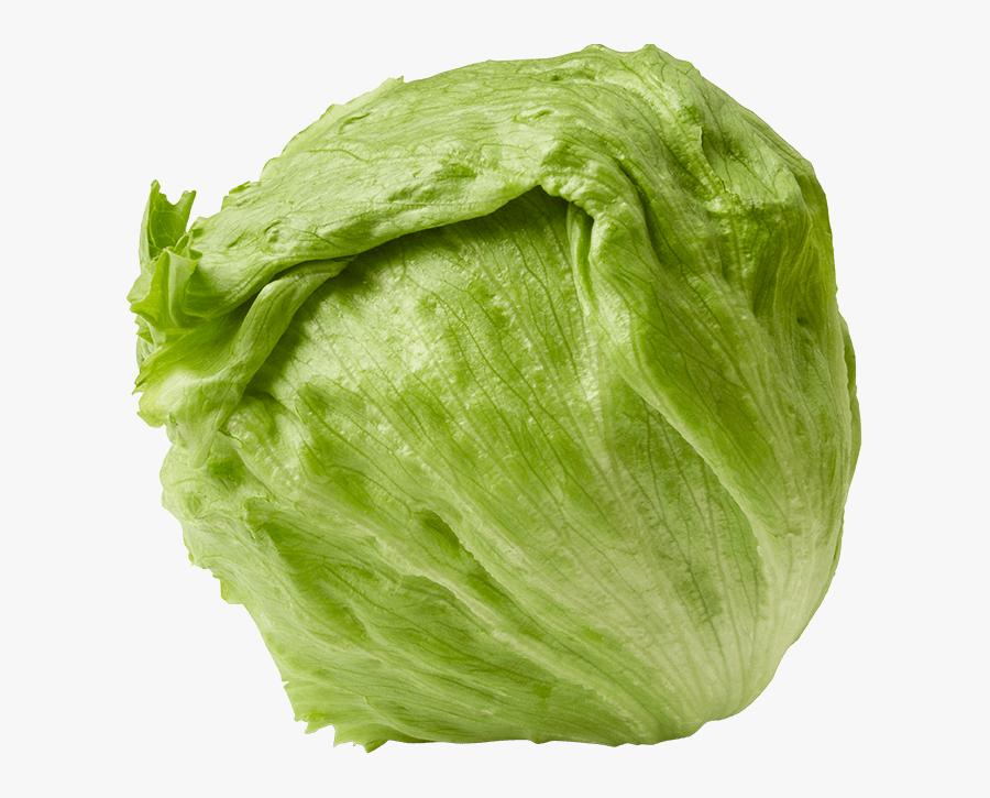 Week 26 Of Pregnancy Infant Uterus - Head Of Lettuce Salad, Transparent Clipart