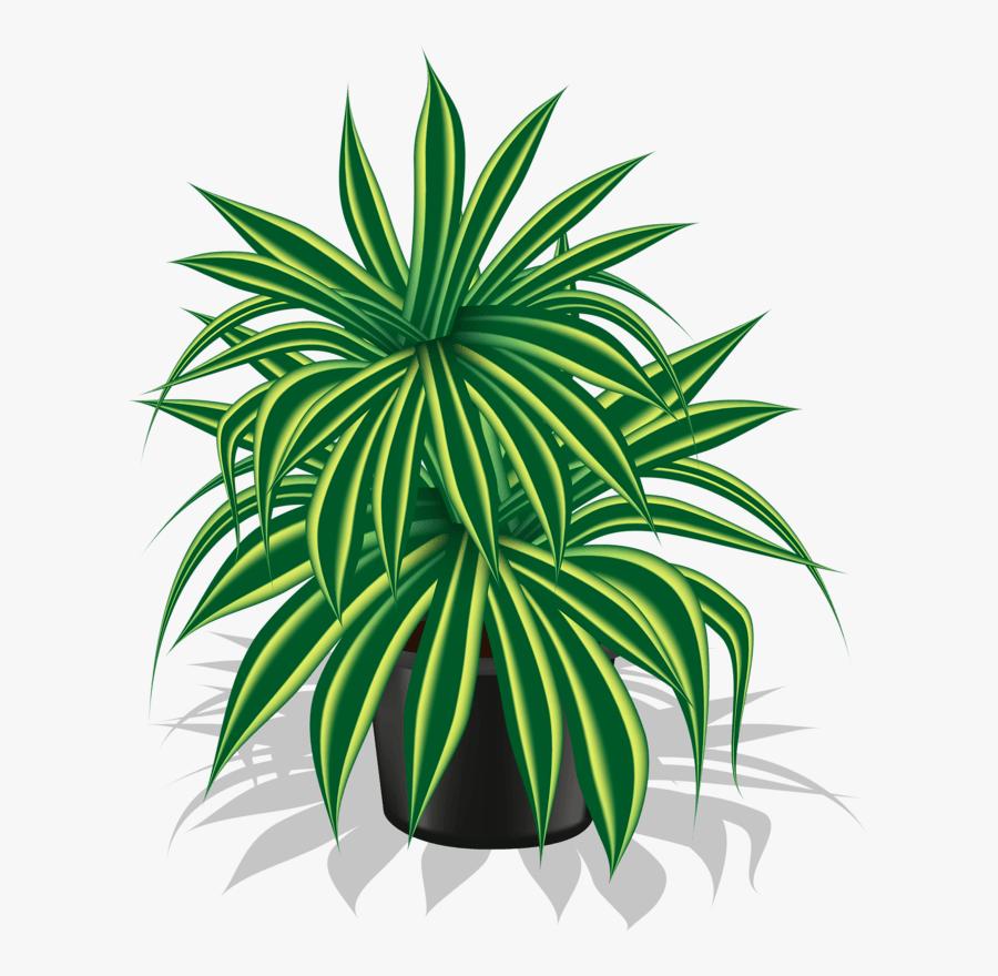 Picture 32 176 My Garden Valley 176 Clip Art Teckningar - Indoor Plant Clipart Png, Transparent Clipart
