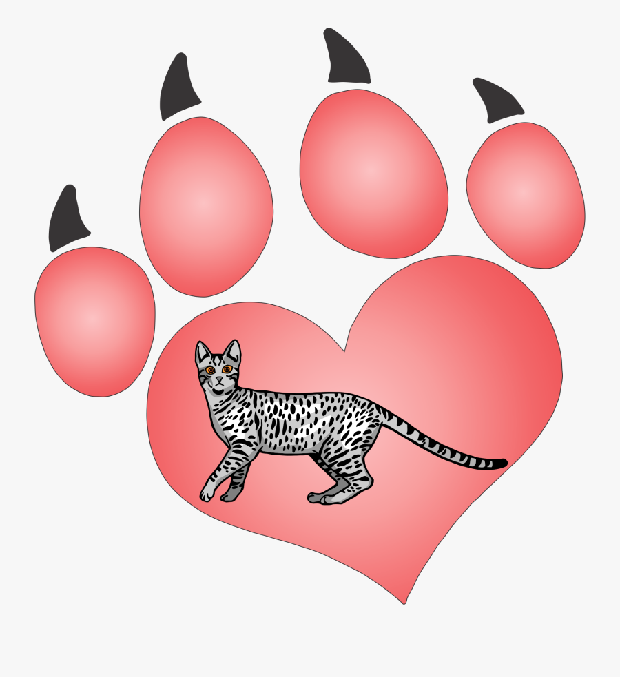 Cat Paw 41 Decal - Valentines Day Dog Clipart, Transparent Clipart