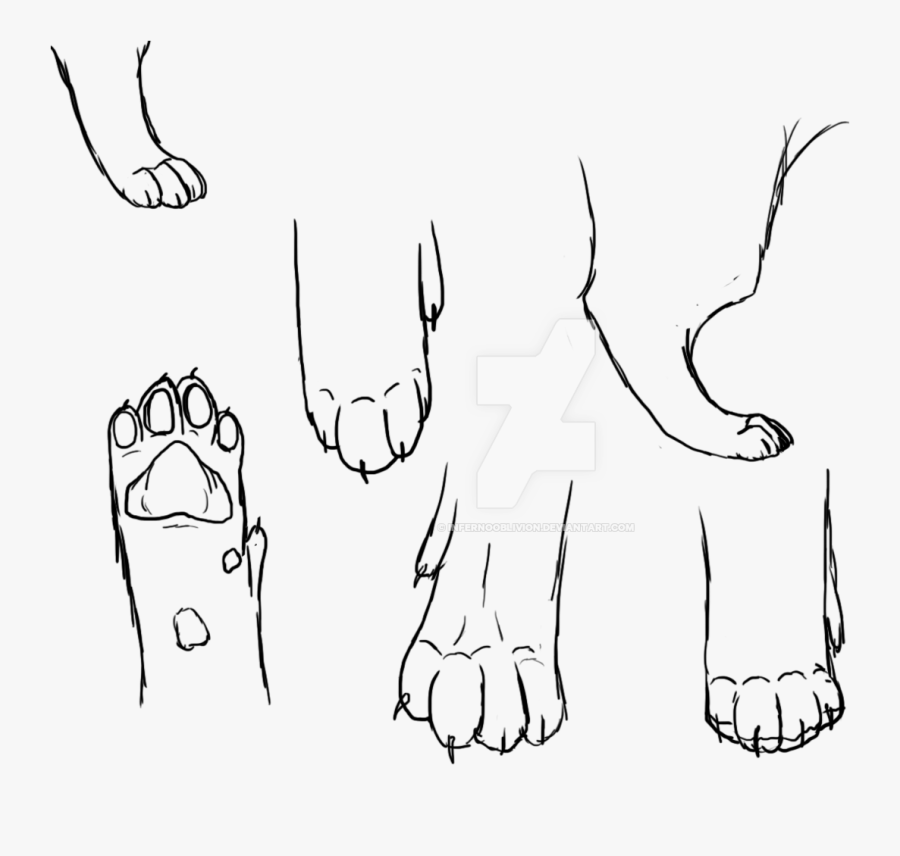 Clip Art Freeuse Download Collection Of Cat Feet High - Drawing Of A Cats Paw, Transparent Clipart