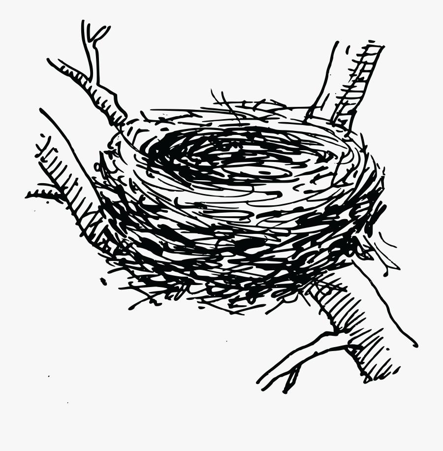 Thumb Image - Clip Art Bird Nest, Transparent Clipart