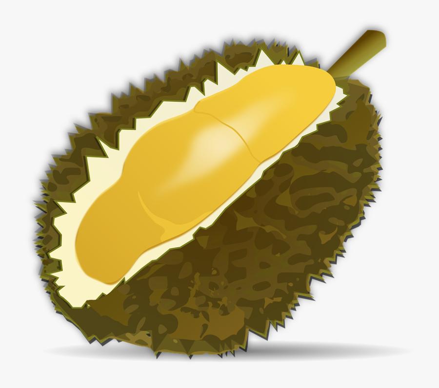 Buah Durian Vector Png, Transparent Clipart
