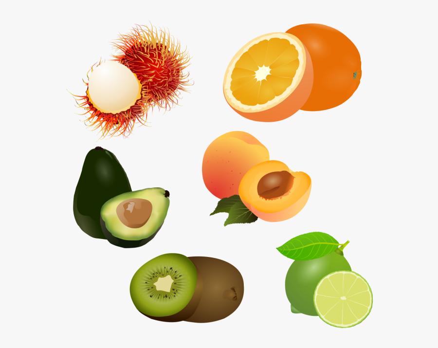 Fruits Clipart Logo Lukisan Buah Buahan 3d Free Transparent Clipart Clipartkey
