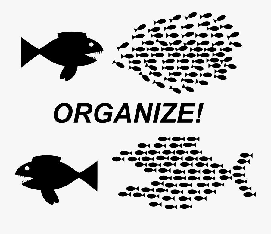 Art,monochrome Photography,text - Organizing Fish, Transparent Clipart