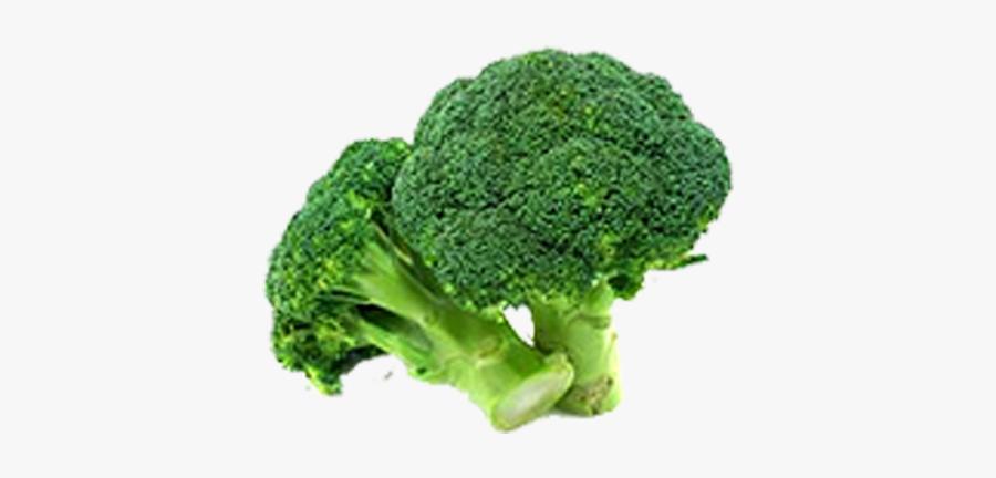 Broccoli Vegetable Food Variety - Broccoli Healthy Food Vegetables, Transparent Clipart