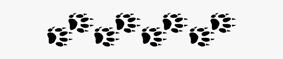 Picture Ferret Paw Print Png Free Transparent Clipart Clipartkey The best selection of royalty free hamster paw print vector art, graphics and stock illustrations. ferret paw print png free transparent