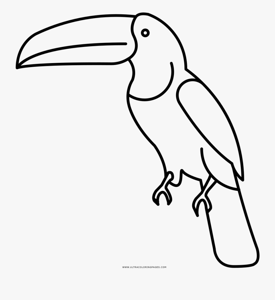 Toucan Coloring Page Dibujos Para Pintar De Un Tucan