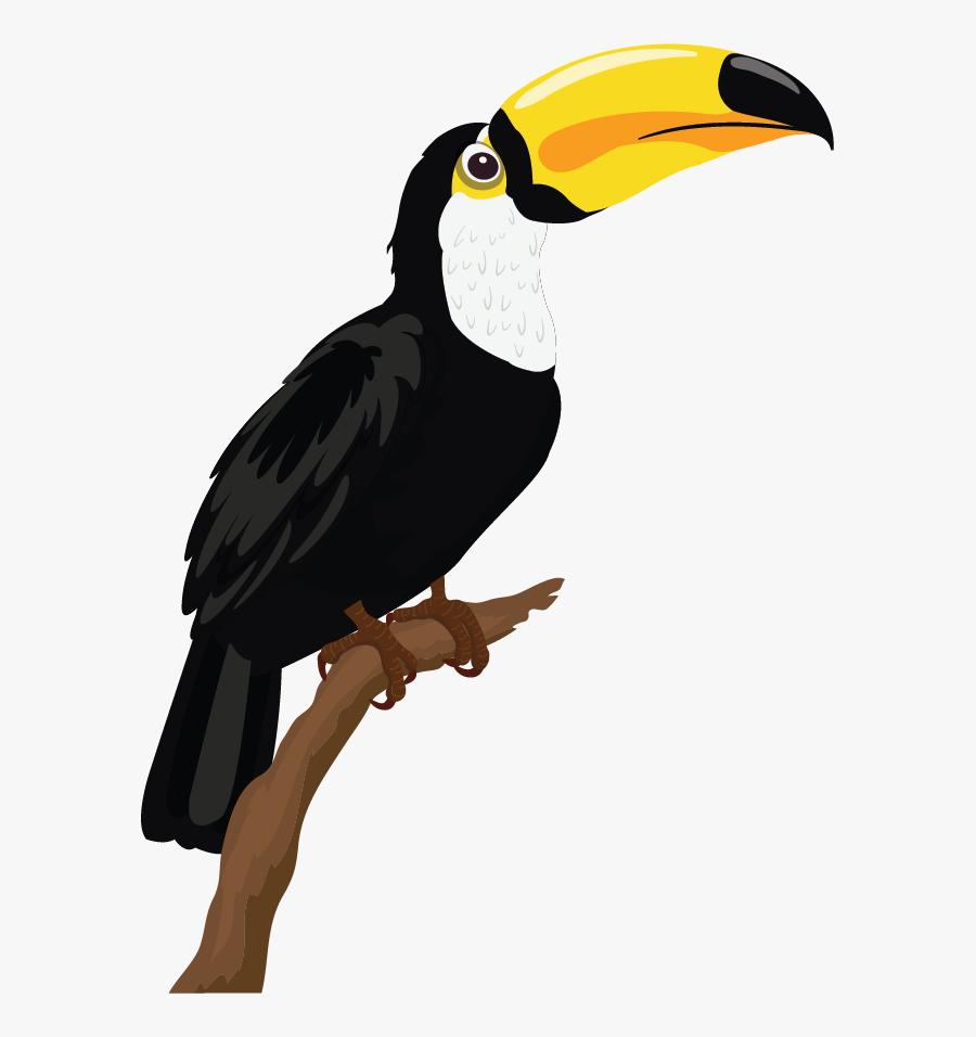 Sketsa Gambar Burung Beo Free Transparent Clipart ClipartKey