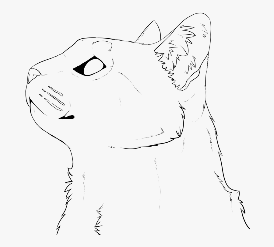 Drawing Barns Cat - Cat Lineart Face, Transparent Clipart