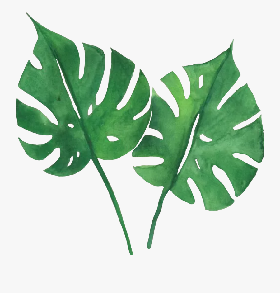 #green #tropical #leaves - Watercolor Tropical Leaves Png, Transparent Clipart