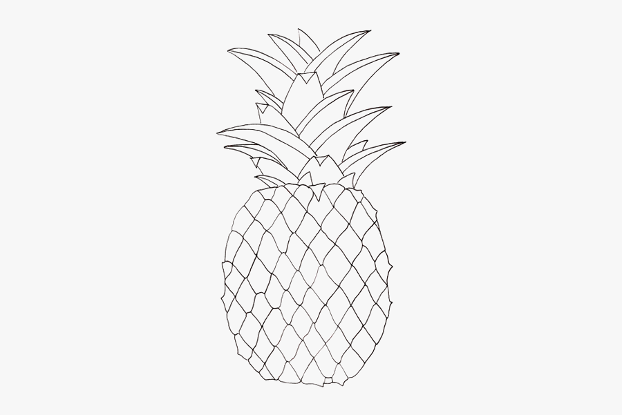 White Drawing Pineapple - Pineapple Pictures To Colour, Transparent Clipart