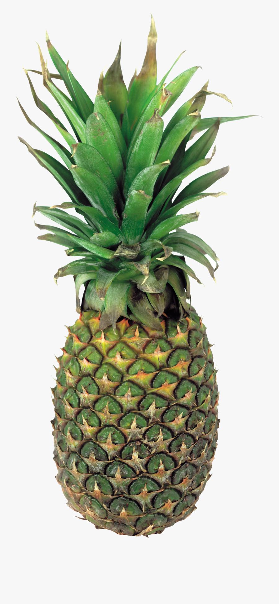 Transparent Pineapple Clipart - Pineapple .png, Transparent Clipart
