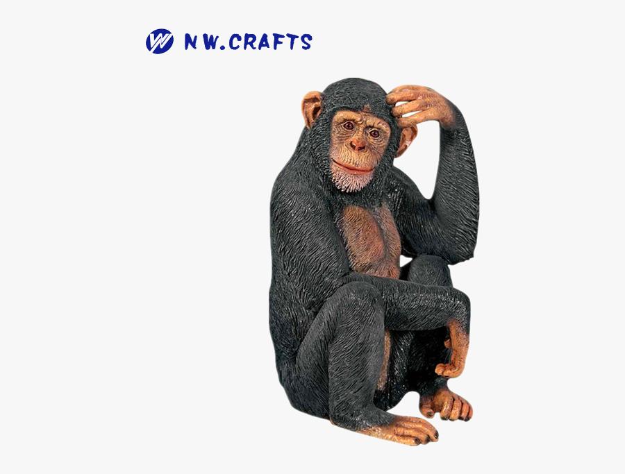 Clip Art Chimp Scratching Head - Monkey Scratching Its Head, Transparent Clipart