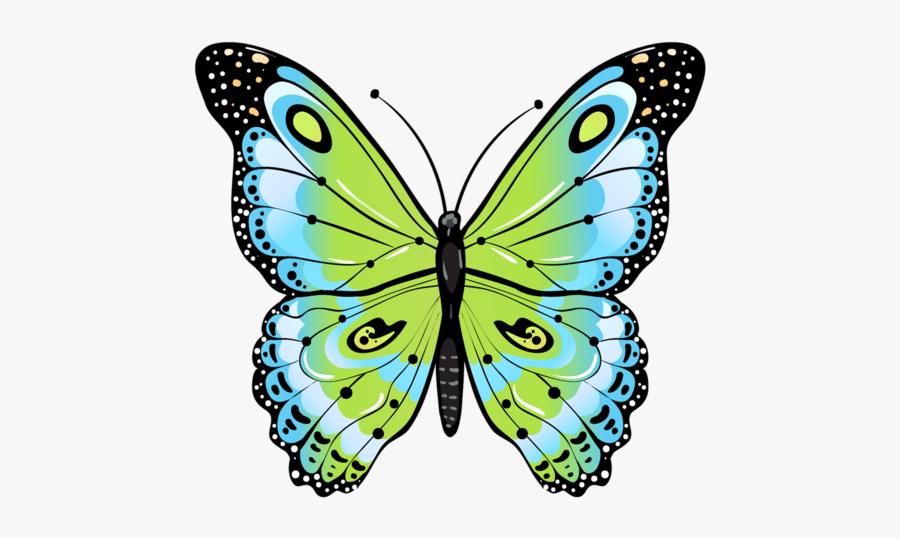 Clip Art Beautiful Moths - Butterfly Drawing Green, Transparent Clipart