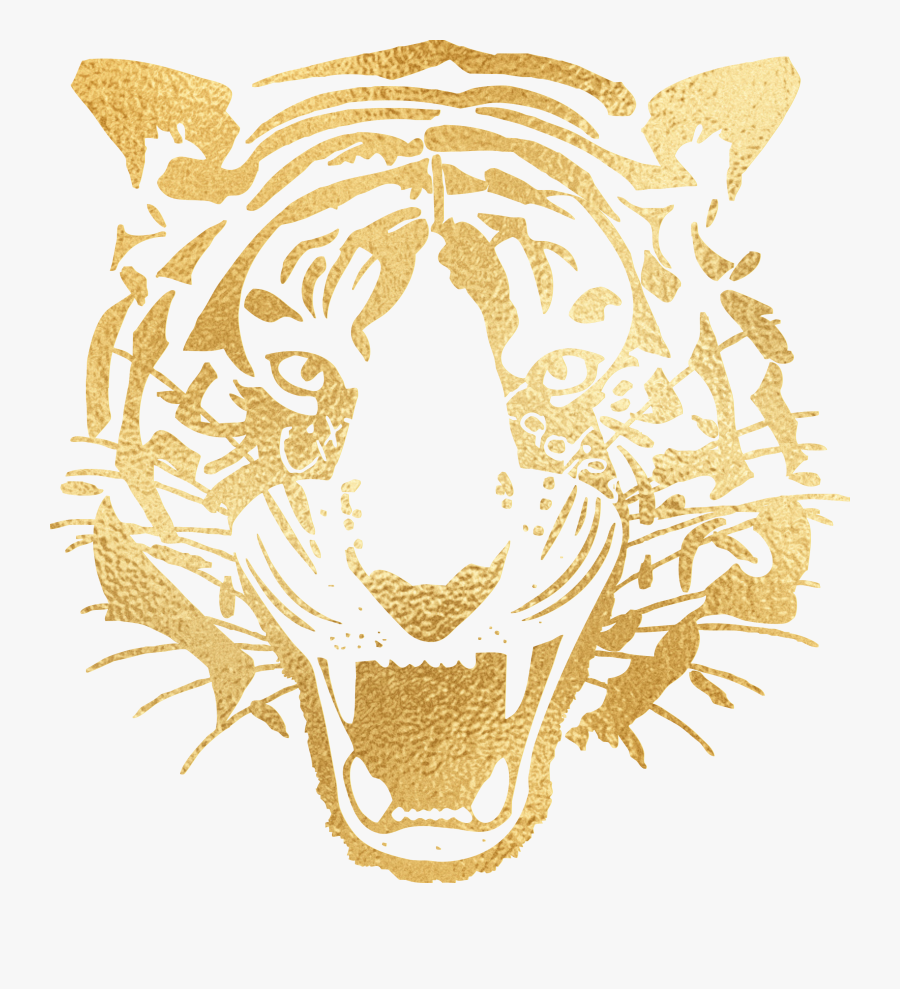 Transparent Tiger Icon Png - Hull City Ladies Football Club, Transparent Clipart