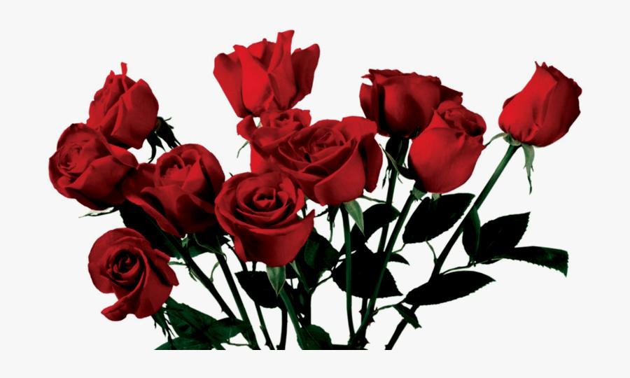 Aesthetic Clipart Rose Aesthetic Transparent Rose Png Free Transparent Clipart Clipartkey #rose aesthetic #cherry aesthetic #red #fruit #pink #lockscreen #lockscreens #lockscrns #iphone #wallpapers #wallpaper. aesthetic transparent rose png free