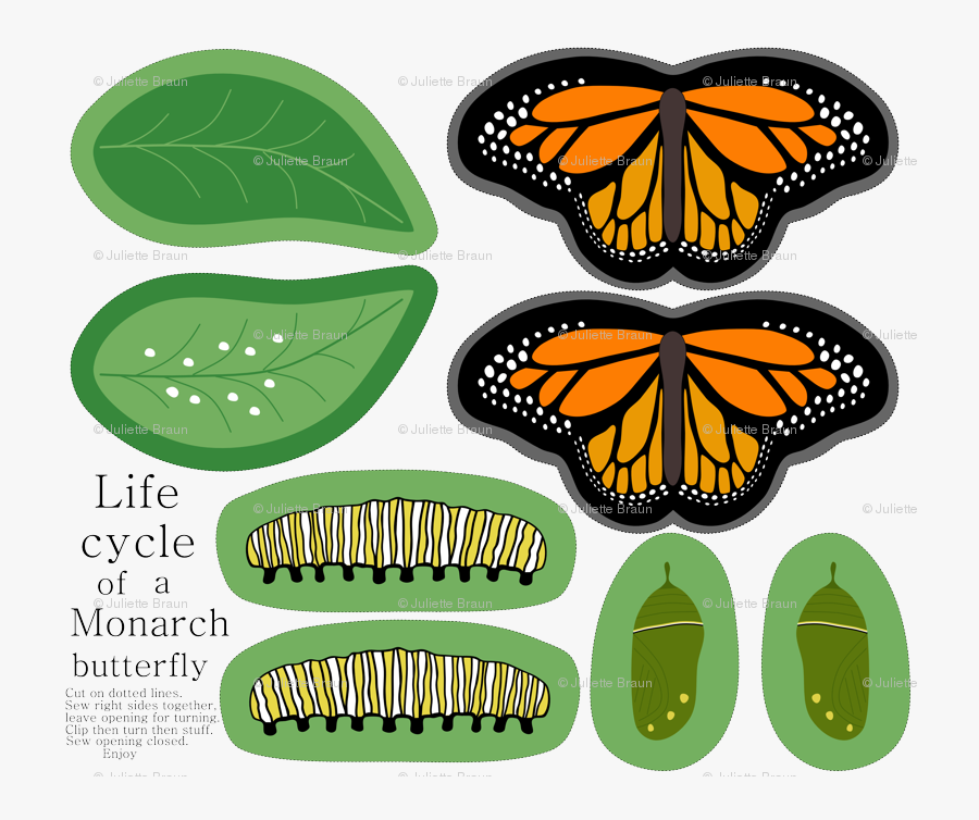 Monarch Butterfly, Transparent Clipart