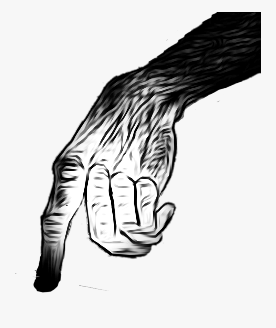 Zombie Ape Hand Scary Creepy Point Finger Cool Zombie Png Sticker Free Transparent Clipart Clipartkey Lords of shadow 2 hand grasp zombie, hand png. zombie ape hand scary creepy point