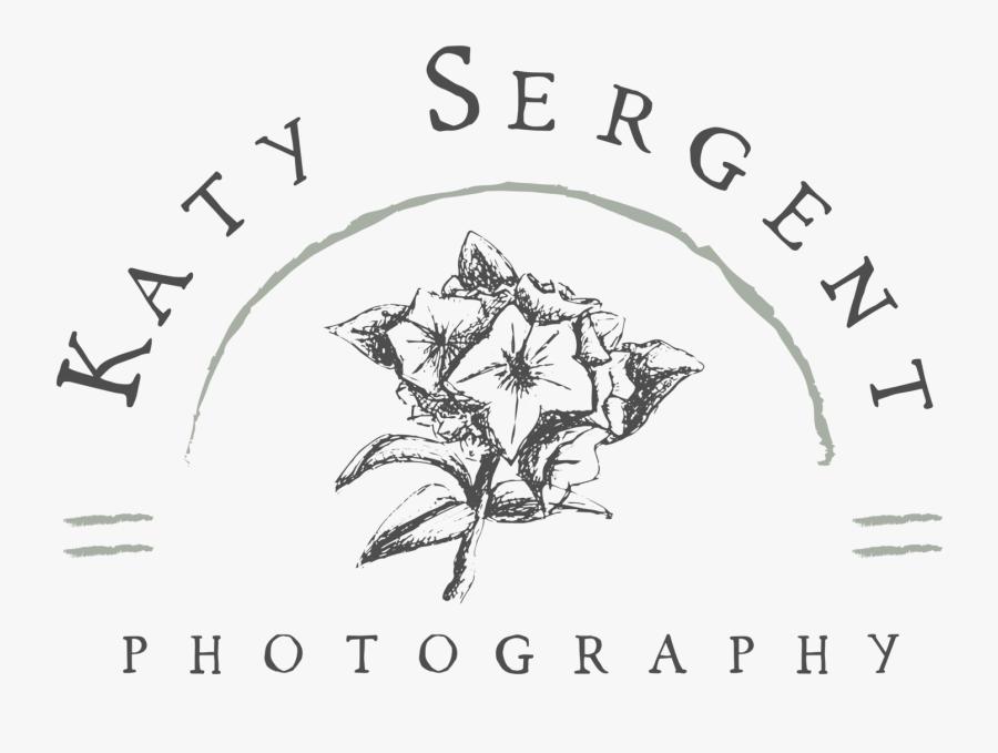 Outdoors Clipart Appalachian Mountains - Evergreen Rose, Transparent Clipart