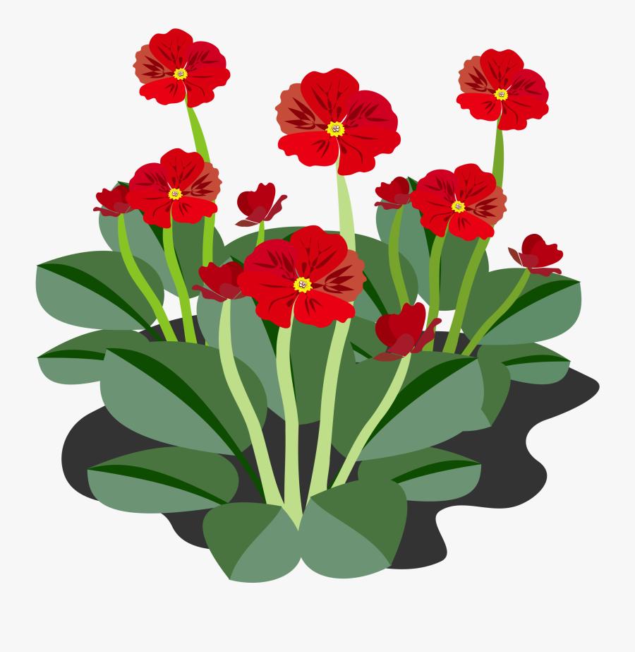 Clip Art, Flor, Flora, Flower, Nature, Plant - Flowering Plants Clip Art, Transparent Clipart