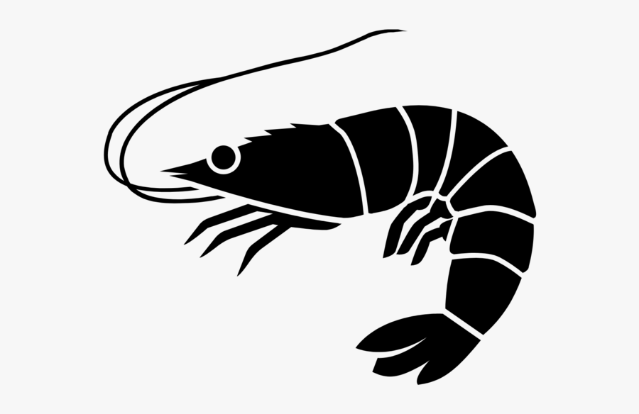 Shrimp Icon - Shrimp Black And White, Transparent Clipart