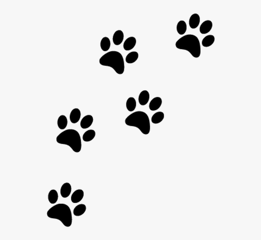 Transparent Zap Clipart Transparent Background Paw Prints Png Free Transparent Clipart Clipartkey To get more templates about posters,flyers,brochures,card,mockup,logo,video,sound,ppt,word,please visit pikbest.com. transparent background paw prints png