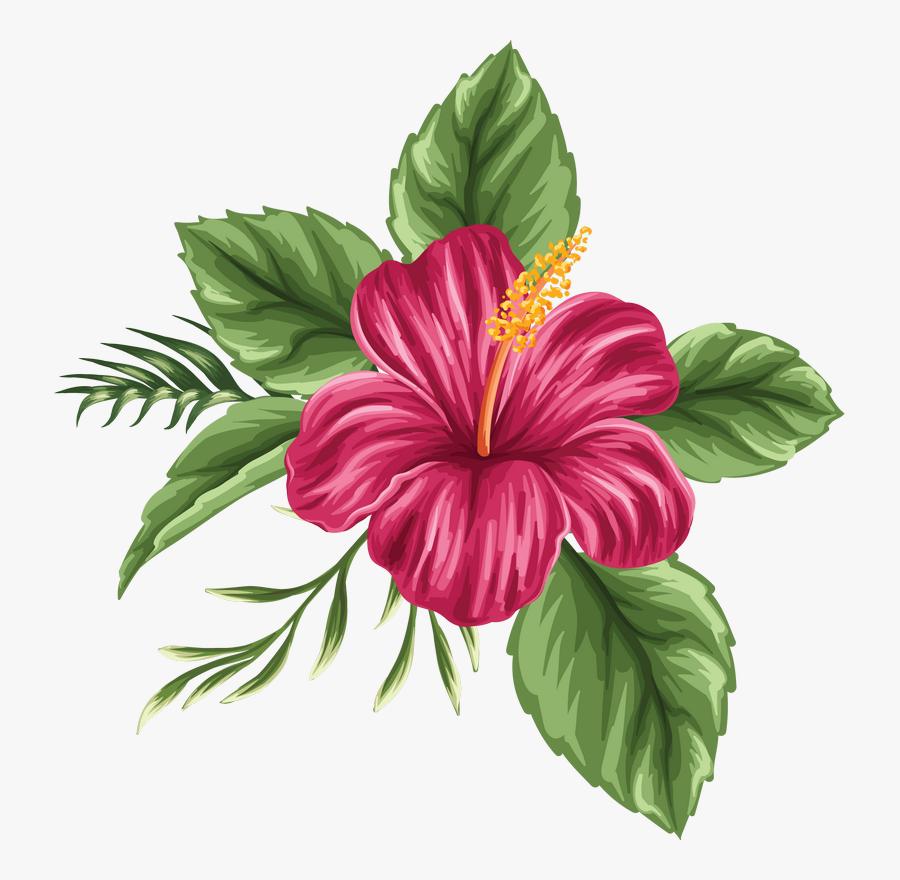 Clip Art Image Du Blog Zezete - Colored Hibiscus Flower Drawing, Transparent Clipart