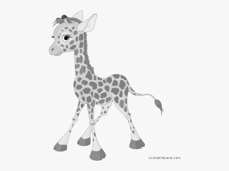 Baby Giraffe Clipart - Baby Giraffe Clipart Black And White, Transparent Clipart